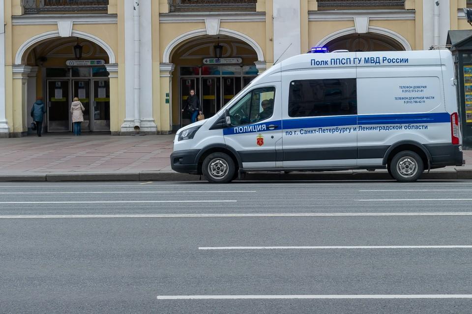 Полиция Петербурга разыскивает потерявшуюся 11-летнюю девочку.