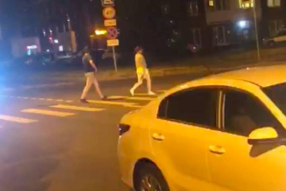 Живодеры устроили стрельбу по кошке в Калининском районе Петербурга