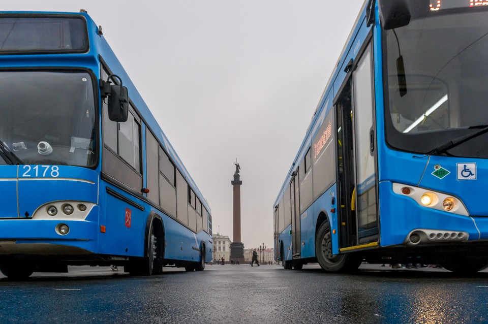 В Петербурге неделю проверяли автобусы, их водителей и пассажиров.