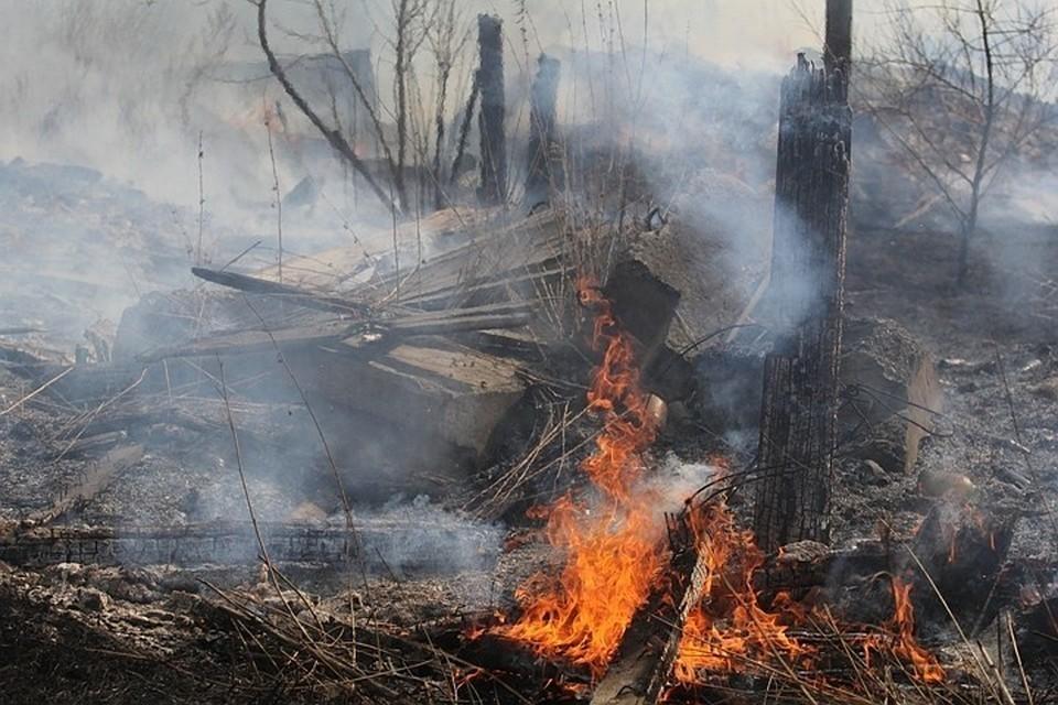 Режим ЧС ввели в лесах Бодайбинского района из-за пожаров