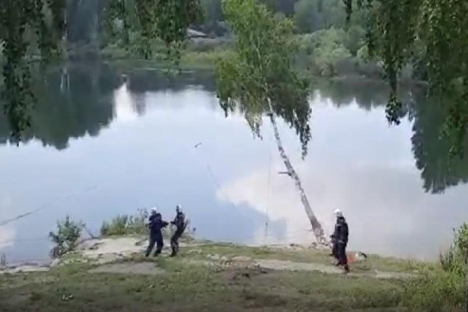 Спасатели спилили опасную березу. Фото: стоп-кадр