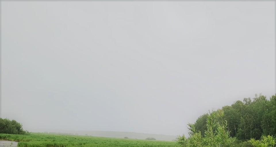 Погода в Югре на 21 июля 2021 года: сильный ветер