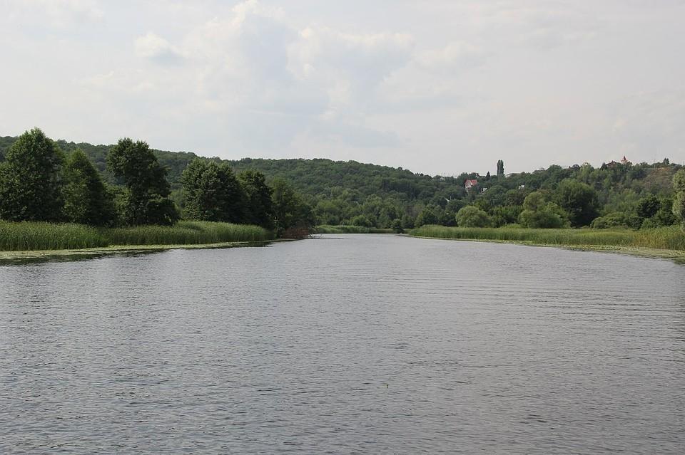 В реке Молога утонул мужчина
