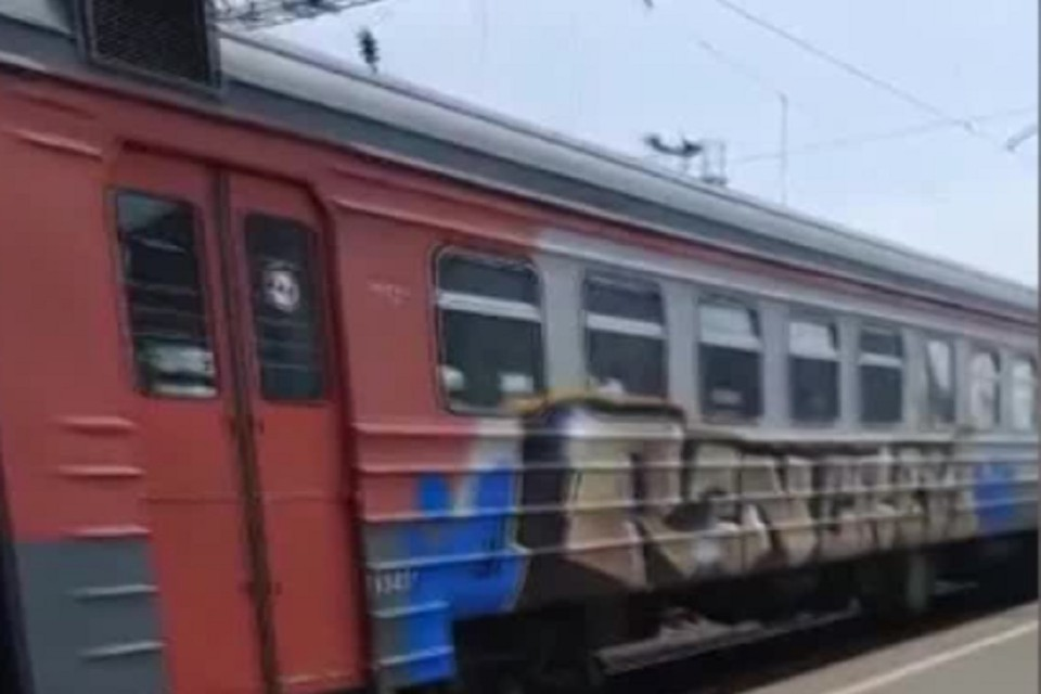 Под Новосибирском поймали вандалов, разрисовавших электричку. Фото: УТ МВД СФО.