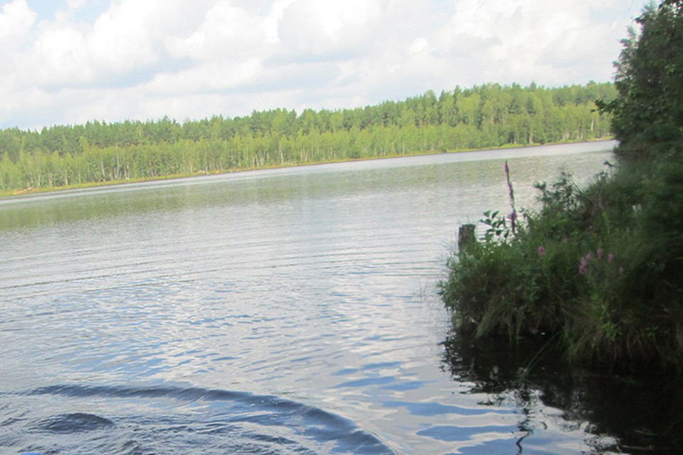 В Минске ребенок едва не утонул в водоеме, его спас милиционер.