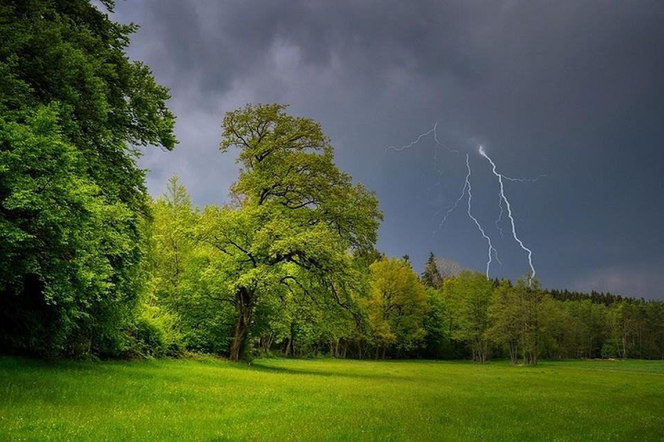 Гроза может застать у воды, в поле, в лесу или на дороге, что нужно делать. Фото: pixabay.com