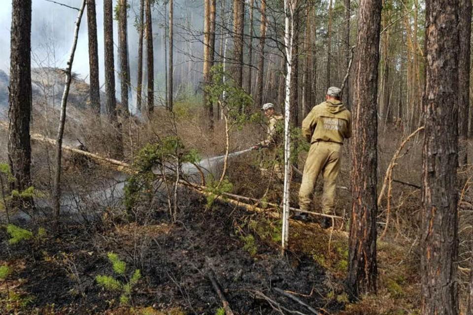 12 пожаров потушили в лесах Приангарья за минувшие сутки