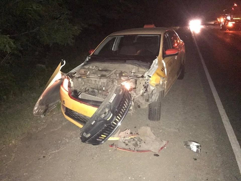 В Самаре таксист сбил кабана. Фото - ГУ МВД России по Самарской области