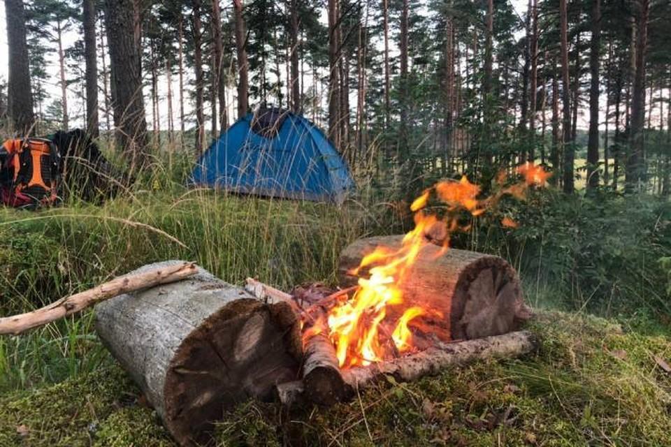 Что делать туристам из-за лесных пожаров в Карелии: Можно ли ехать в республику