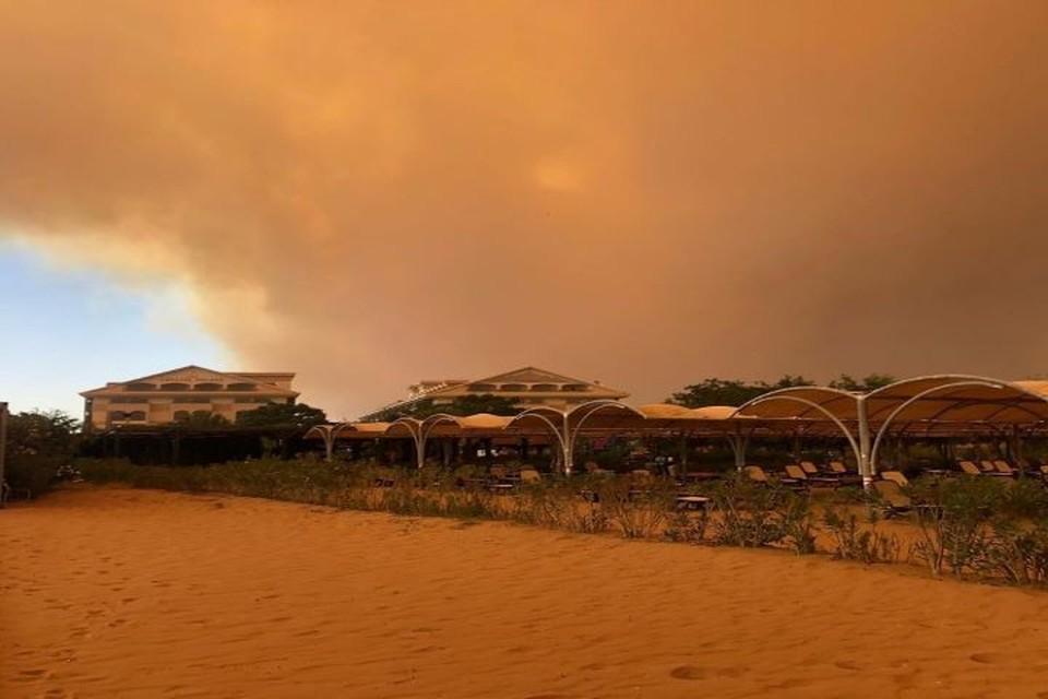 По меньшей мере один человек погиб при лесных пожарах в Турции Фото: instagram.com
