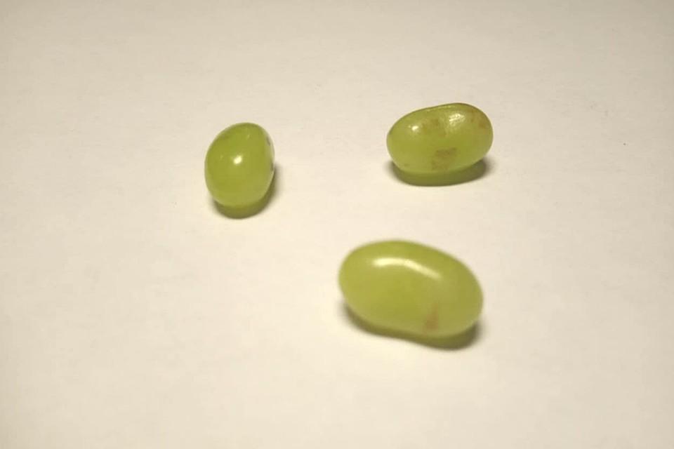 Рассылаемые мошенниками порошки и таблетки состояли, в основном, из дексаметазона - мощного синтетического гормона