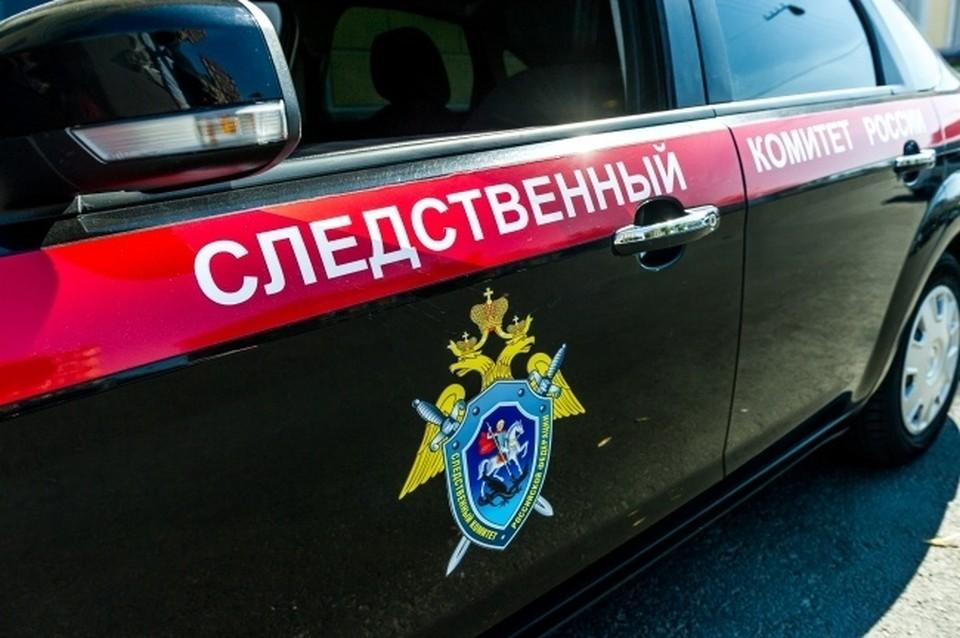 В Новосибирской области 19-летнего парня обвиняют в причинении смерти по неосторожности.