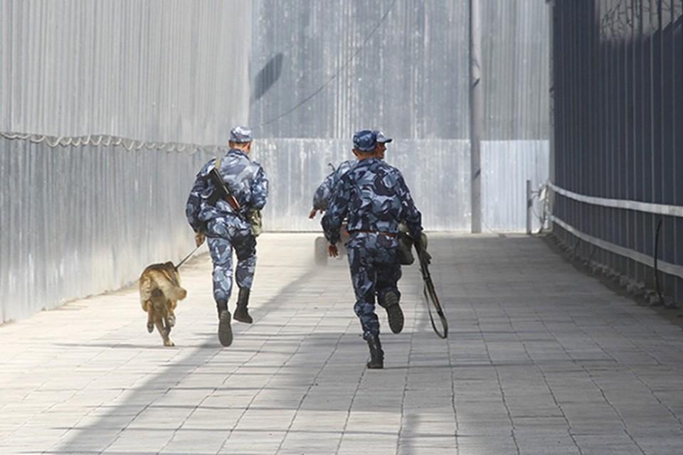 Осужденные взбунтовались в ИК-14, где отбывают наказание за серьезные преступления