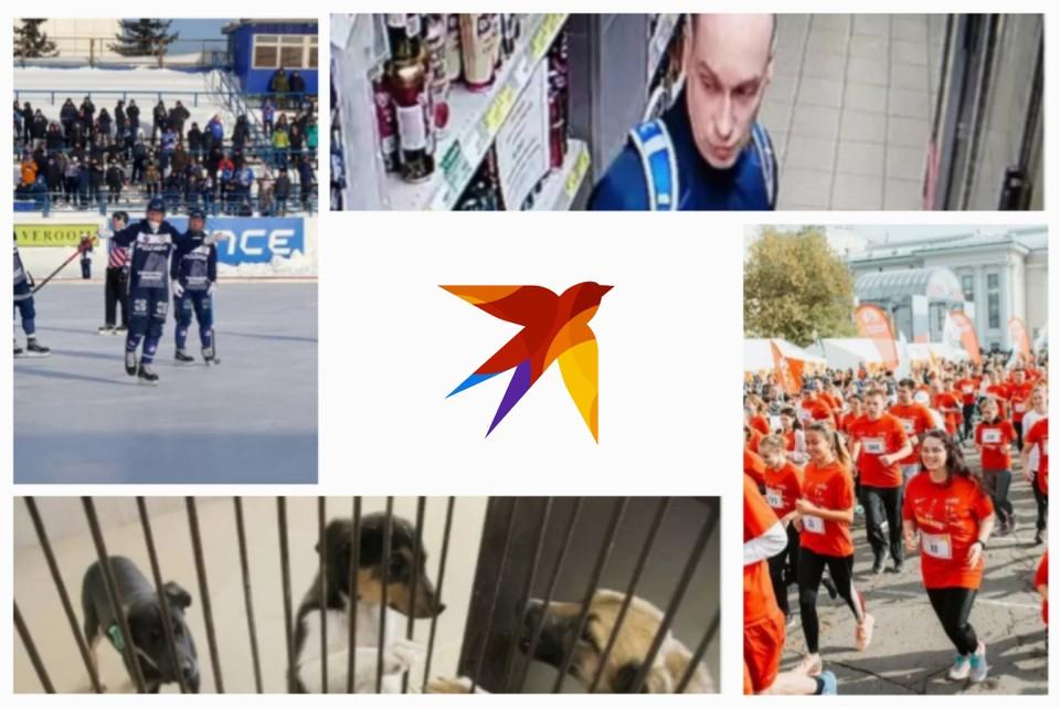 Главные новости Кировской области за ушедшую неделю в одной фотографии. Коллаж: Виктор Карпов