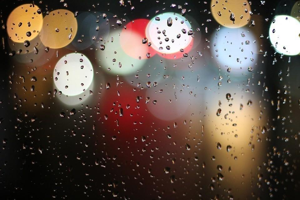 В течение дня возможен дождь.