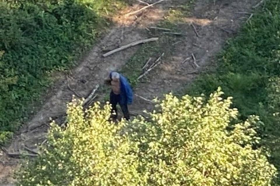 """Вертолетчики заметили блуждающего по лесу мужчину. ФОТО: группа """"Поиск детей и взрослых """"ЯрСпас"""""""