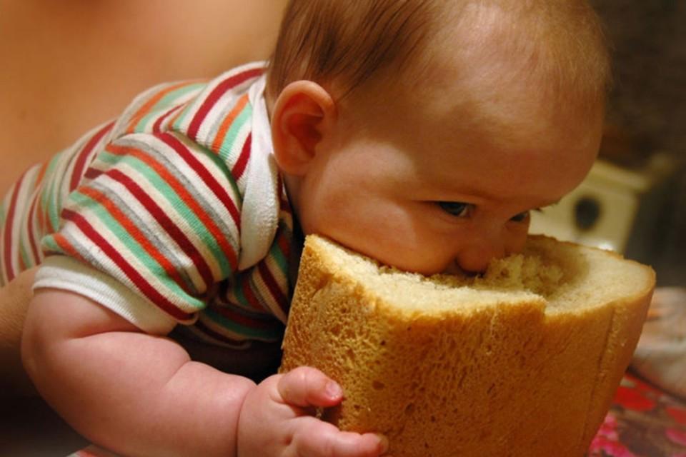 Как жить без хлеба?