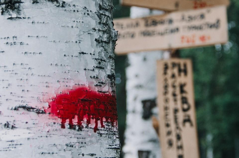 Часть спектакля показывается в лесополосе, где захоронены жертвы политических репрессий. Фото: Музей истории Екатеринбурга