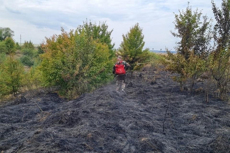 Огонь остановили на подступе к жилым домам