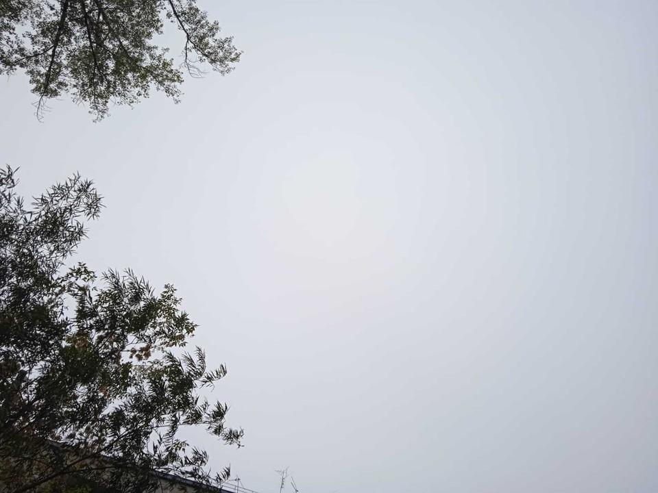 В Югре местами дождь, плюс 12.