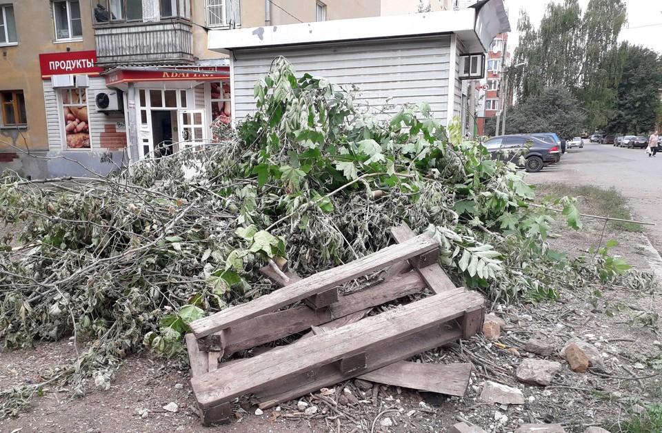 Мэрия Рязани пообещала вывезти августовский мусор с улицы Пушкина. Фото: Марина Сусорова   Рязань.