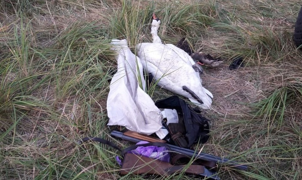 Браконьера поймали с поличным. Фото: прокуратура Челябинской области