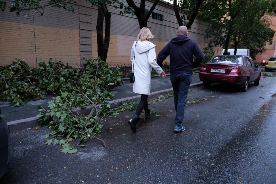 Городские службы Петербурга перешли в повышенную готовность из-за шторма