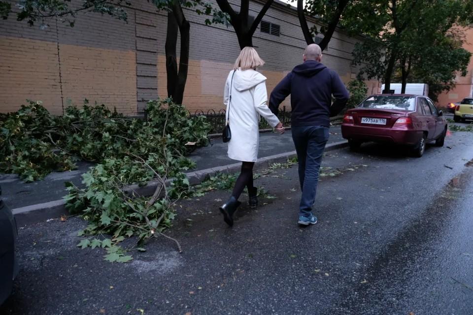 """""""Ленэнерго"""" перешло на режим повышенной готовности к последствиям порывистого ветра в Петербурге."""