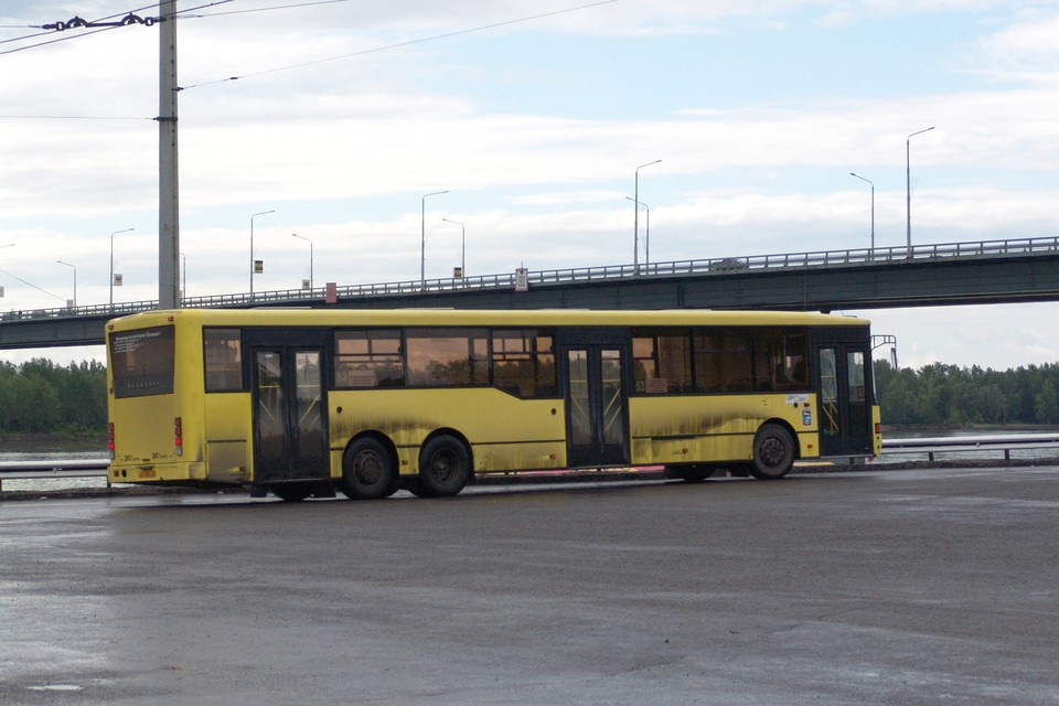 По словам горожан, в Барнаул можно попасть только с частным извозом