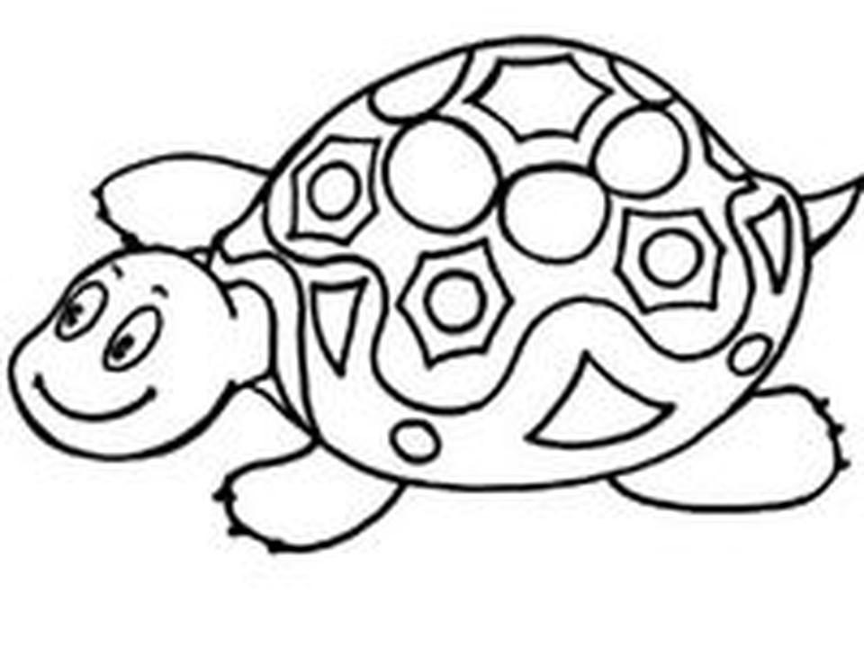 Раскраска: Черепаха