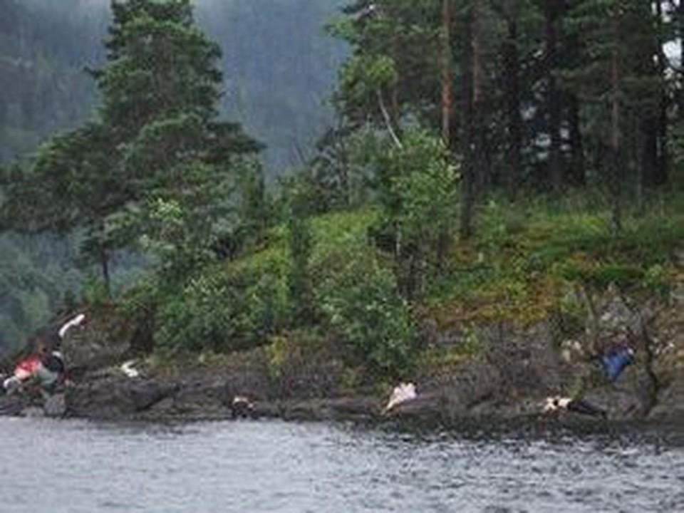 От рур террориста на норвежском острове Утойя погибли около 70 ни в чем неповинных ребят.