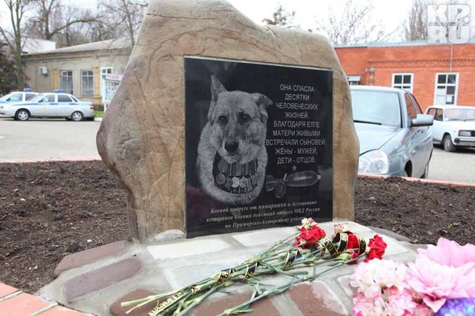Памятник овчарке установили прямо у входа в районный отдел полиции
