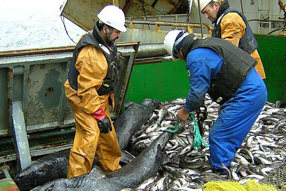 Работа у рыбаков тяжелая, но в последние годы хорошо оплачивается