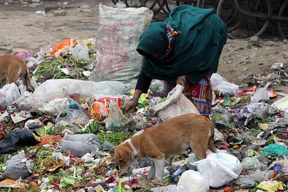 Это подтверждает и признание индийской столицы самым грязным городом планеты среди городов-миллионеров