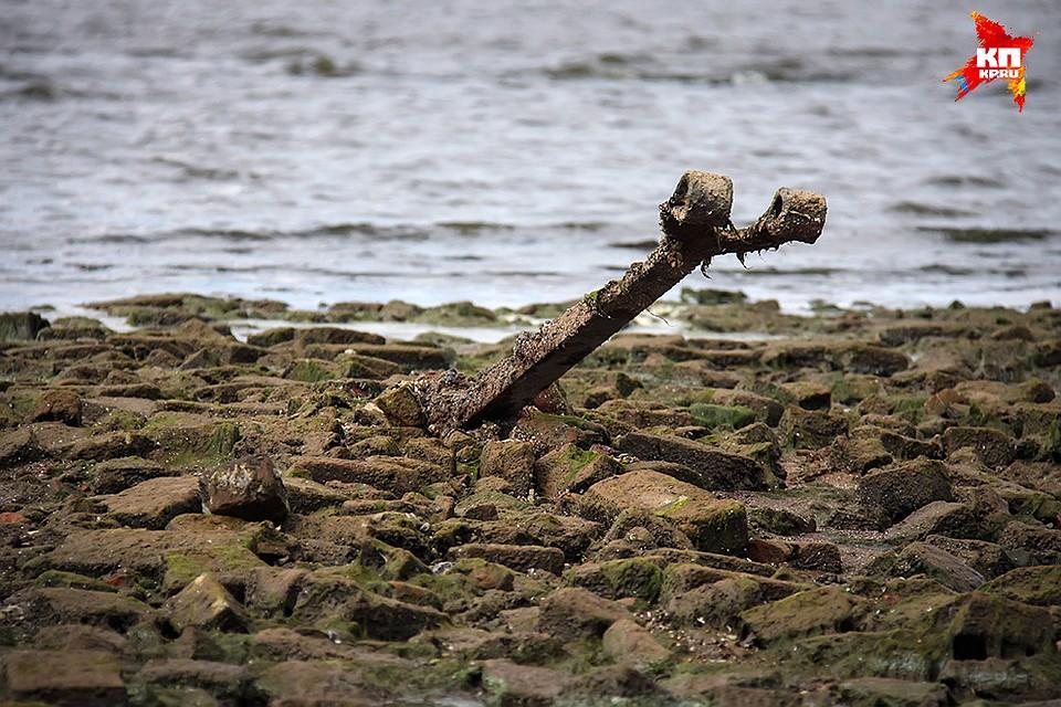 Фото мологи показавшейся из воды