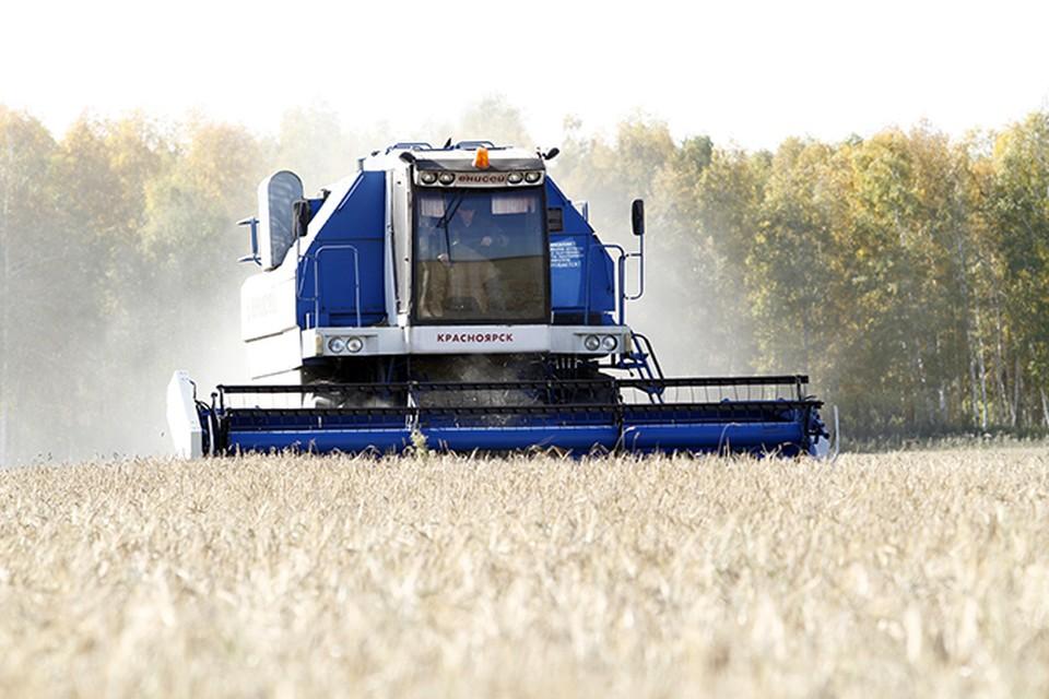 В Хакасии идет уборка урожая