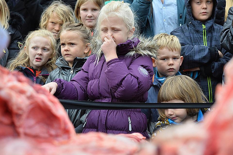 Картинки по запросу «изуверство» в датском зоопарке