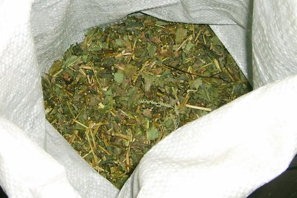 Марихуана купить в одессе правовой статус марихуаны