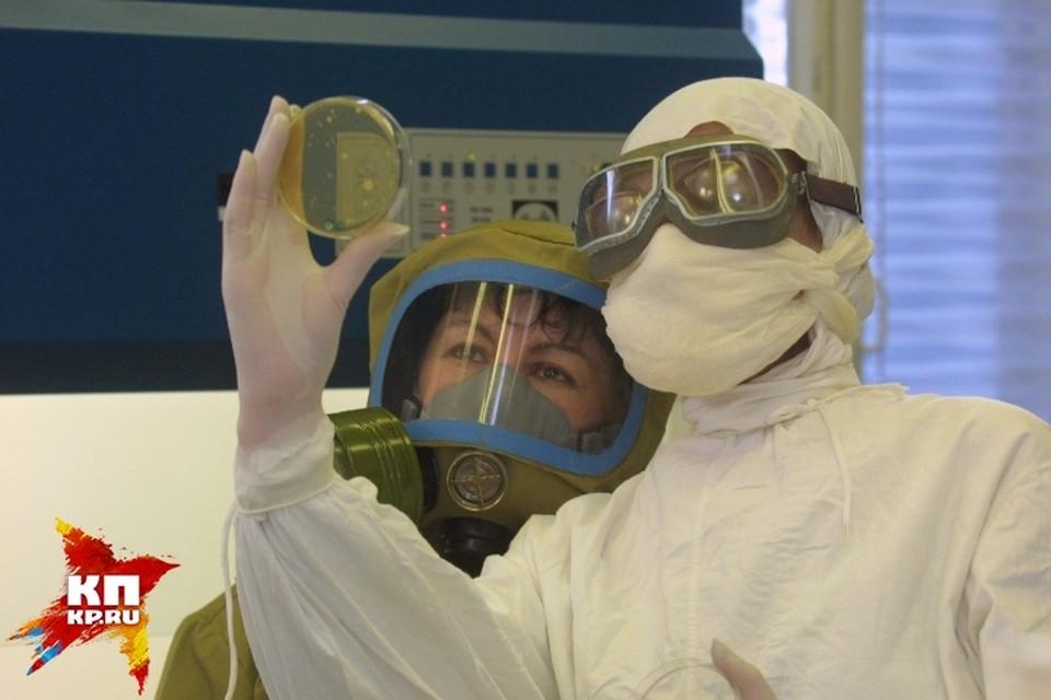 Ученые из Новосибирского центра вирусологии и биотехнологии «Вектор» с 1974 года изучают Эболу. И вот, похоже, подобрали ключ к лечению этой заразы.