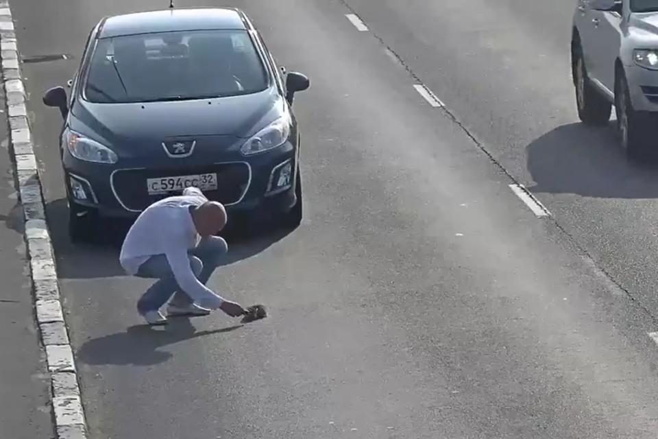 Неравнодушный водитель «Пежо» остановился и подобрал малыша