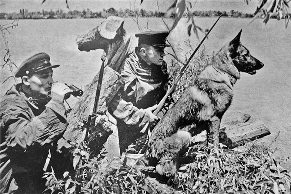 Значительная часть сотрудников НКВД - пограничники
