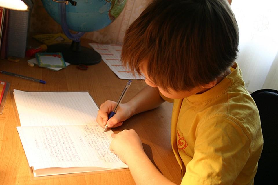 """Восьмилетний сын на каждый родительский """"косяк"""" оригинально отвечает - пишет жалобные письма Путину"""