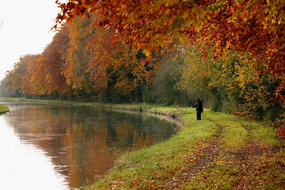 Во Франции в разгаре золотая осень