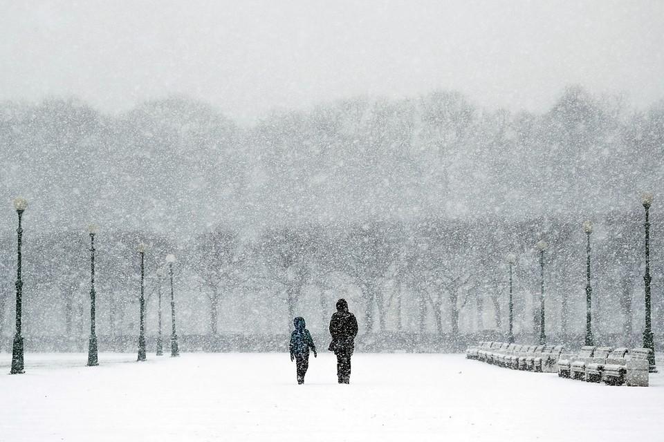Санкт-Петербург завалило снегом