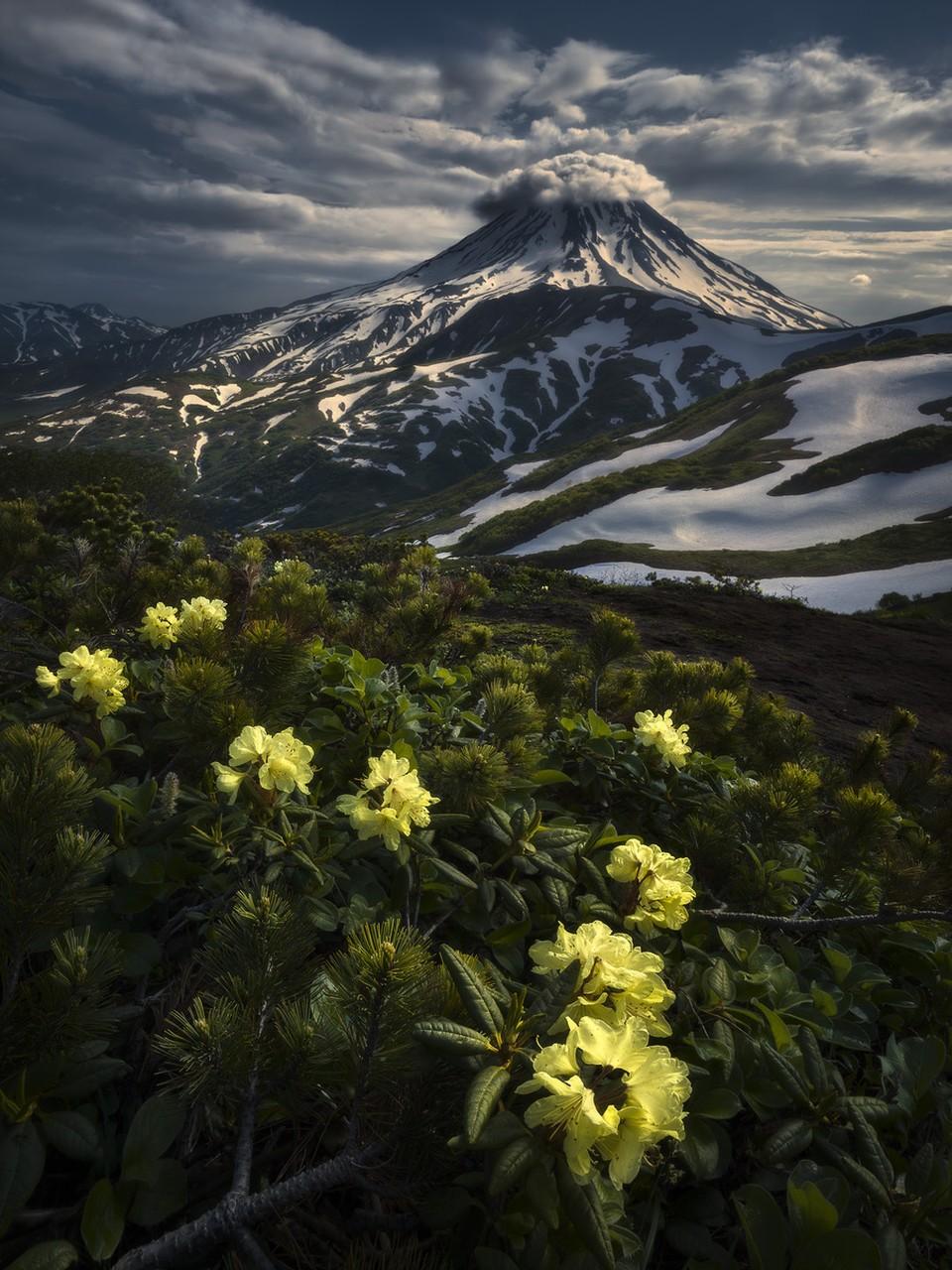 Определены победители международного конкурса пейзажной фотографии 2020 года. Фото: Isabella Tabacchi/ILPOTY 2020