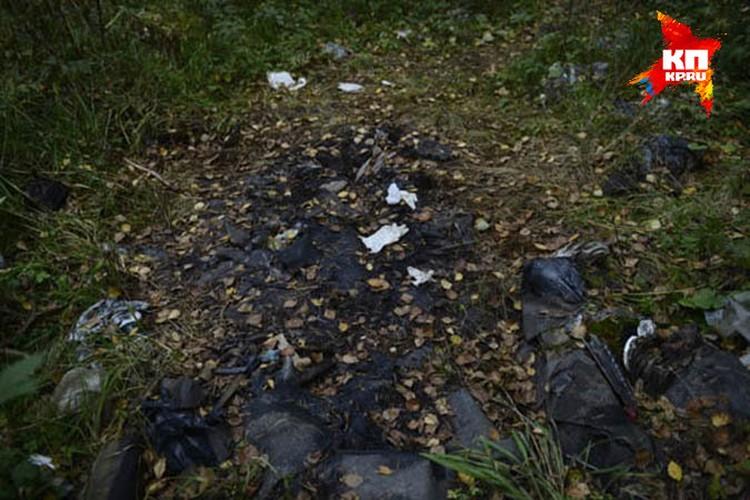 """Тело Юлии нашли в лесу под Первоуральском. Неподалеку от этого места была обнаружена сгоревшая """"Хонда"""", которую угнал заключенный"""
