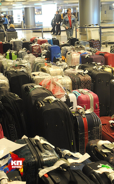 Чемоданы в Египте не остаются — их отравляют домой специальными бортами МЧС, Минобороны и транспортными самолетами других российских перевозчиков.