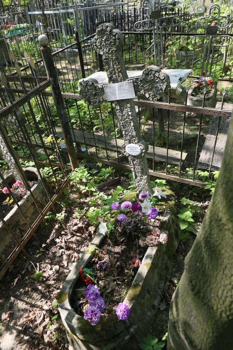 Могила, из которой Прокофьевы выкопали отца и мать.