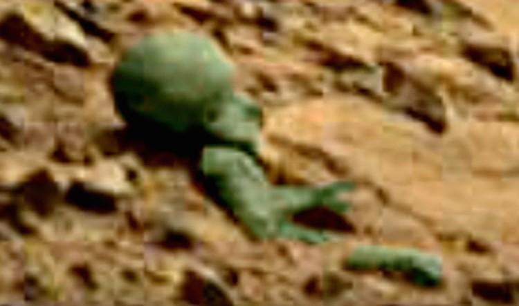 Зеленым останки затонировал виртуальный археолог - чтобы их лучше было видно.