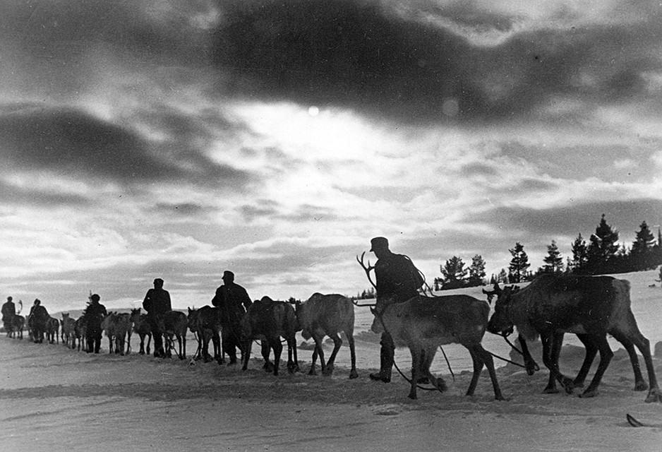 Летом и осенью 1941-го финны оккупировали Карелию Фото: GLOBAL LOOK PRESS